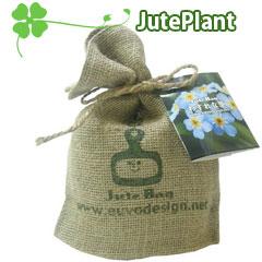 とってもエコでオシャレなプランター栽培セット☆JutePlant-