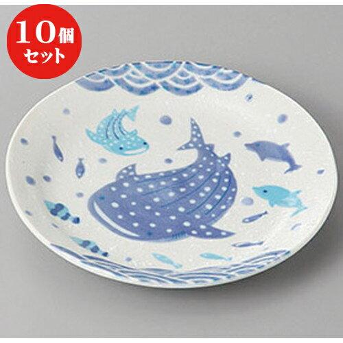 10個セット ☆ 組皿 ☆ジンベー50皿 [ 16.4 x 2.5cm ]