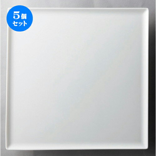 5個セット☆ 洋食器 ☆ ニューヨーク24cmスクエア [ 245 x 8mm ] 【レストラン ホテル 飲食店 洋食器 業務用 】
