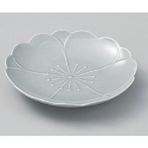 5個セット☆ フルーツ皿 ☆さくら(消墨) お取皿φ15cm [ 15 x 2cm 227g ]