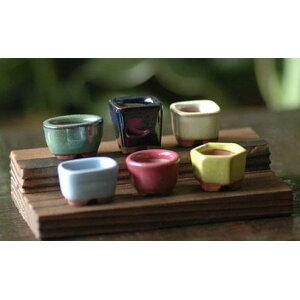 Ensemble de 6 pièces de bonsaï haricot Pot de fleur de style japonais Mini pot de bonsaï