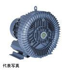 昭和電機 U2S-220 送風機 渦流式高圧シリーズ ガストブロア(U2S型)
