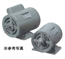 一宮電機AES-DBF4P100W