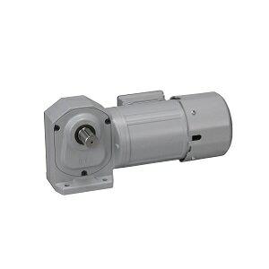 ニッセイ ギアモータ 直交軸 H2L50M300-WD08TNNEV2 脚取付 防水 0.75kW 三相200V 防水ブレーキ付