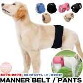 犬マナーベルトマナーパンツマナーバンドオムツカバードッグウェア犬の服服しつけマーキング防止トイレ介護男の子用女の子用h0270