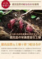干し芋 150g×4袋 紅はるか ほしいも 送料無料 メール便 国産 無添加 鹿児島県産 紅はるか 干しいも 干しイモ 乾燥野菜 乾燥芋 ビタミンC スイーツ