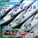 三陸産 鮮 秋刀魚 1尾140g以上保証 総重量2.8kg(18〜20尾入が目安となります) 食べ方ガイド付き 生さんま サンマ
