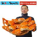 """年内1,000セット限定!【訳あり】本ズワイ蟹""""超特大""""姿造..."""