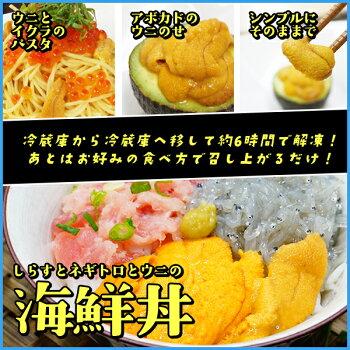 2014年グルメ大賞受賞無添加天然生ウニ100gミョウバン不使用で更に美味しくうに雲丹海鮮丼寿司すし寿司ネタ