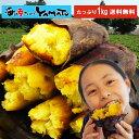 冷凍焼き芋 茨城県産シルクスイート 山盛り1kg スイーツ さつまいも サツマイモ 鹿吉