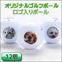 1セット用(12球)ロゴ入り・オリジナルプリントボール【プレ...