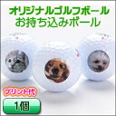 1球150円 お持込み・オリジナルプリントボール【記念品 ギ...