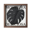F-Style Frame Monstera deliciosa/Black ≪リーフパネル≫ エフスタイルフレームモンステラデリシオサ/Black