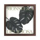 F-Style Frame Monstera deliciosa/Black2 ≪リーフパネル≫ エフスタイルフレームモンステラデリシオサ/ブラック2