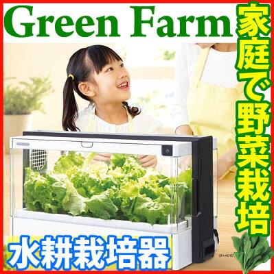 家庭で野菜を栽培!お子さまでも簡単♪自由研究、観察日記にも◎【送料無料】ユーイング Green ...