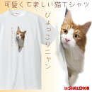 ひょっこりニャンtシャツ