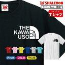かわうそ tシャツ アニマル 【 カワウソフェイス 選べる8カラー】 クリスマス
