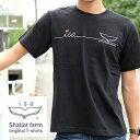 《isa オリジナルプリント Tシャツ》IT002【isaTシャツ】大人気のisaラインデザインTシャツ!!