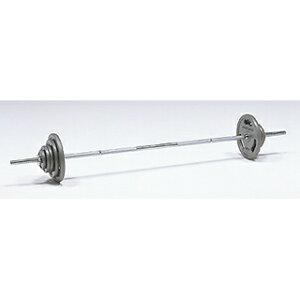 【バーベルセット】【バーベルダンベルセット】【バーベルセット】ト—エイライト バーベルプレートST35kgセット  H-8640