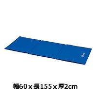 【フィットネスマット】【送料無料】フィットネスマット150FH-7306B