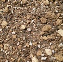 【送料無料】バラの土25L×2袋セット【プロ推奨!バラ専用培養土】