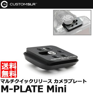 【C-Loop使用可】マルチクイックリリース クイックシュー【メール便 送料無料】【即納】 CUSTOM...