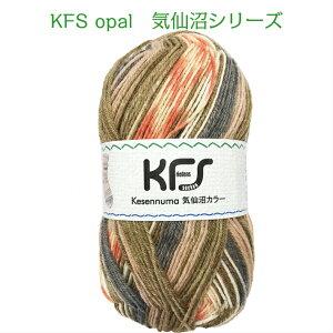 KFSopal気仙沼シリーズ