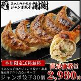 ≪本州限定送料無料≫王さんの手包みジャンボ餃子(ぎょうざ・ギョウザ)30個 中華 ギフト 生餃子