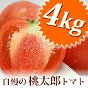 すっきりした酸味と甘み、そして完熟しても皮、果肉もしっかりしているので日持ちがよいトマトです。桃太郎完熟トマト(約4kg)箱入りセット兵庫県 姫路市 網干産
