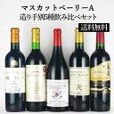 【送料無料】マスカットベーリーA造り手別5種飲み比べセット[日本ワイン][ワインセット]
