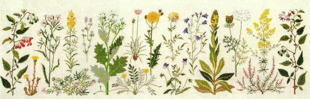 フレメクロスステッチ刺しゅう輸入キットCoastalflowers海岸の花HaandarbejdetsFremmeデンマーク刺繍北欧10B上級者GB30-5406