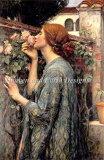 ししゅう図案 HAED Heaven And Earth Designs クロスステッチ 輸入 私の甘いバラ The Soul of the Rose 上級者 全面刺し
