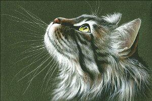 図案 Heaven And Earth Designs クロスステッチ刺繍 HAED 輸入 上級者 Irina Garmashova 魅惑的な猫 Mini Fascinating 全面刺し