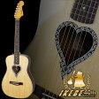 "Fender Acoustics 《フェンダー・アコースティック》 Alkaline Trio Malibu Spruce Top ""IKEBE 40th Anniversary Model"""