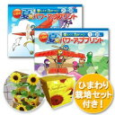 300セット限定販売!七田式 夏のパワーアッププリント