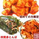【送料無料】 キムチ 2種類選択福袋 初めての方限定◆北海道...