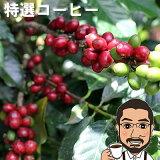 コーヒー豆 送料無料 特選コーヒー200g ニカラグア・エンバシー農園ダブルファーメンテーション【メール便 送料無料 コーヒー コーヒー豆 お試し コーヒー豆 おすすめ レギュラーコーヒー coffee ニカラグア コーヒー】