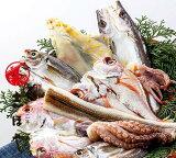 鮮魚の一夜干し