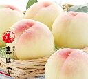 水蜜桃 超特級(2Lサイズ) 岡山 白桃 お中元 ギフト お供 お取り寄せ(5玉)