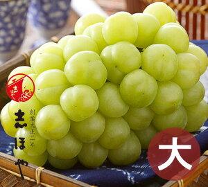 桃太郎ぶどう 特大 1房 約900g (8月上旬〜8月20日出荷分) 岡山 種なし ぶどう ギフト