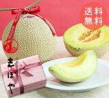 【送料無料】母の日 ギフト 静岡県産 クラウンメロン (マスクメロン) 1玉 高級 フルーツ プレゼント
