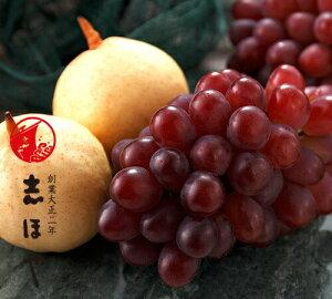 岡山の果物詰合せ (紫苑1房・ヤーリー梨3玉)お歳暮 お祝 内祝 お供え お返し お取り寄せ ギフト