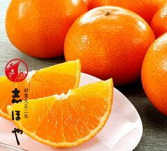 【ネット限定!送料無料・込み!愛媛生まれの話題の新柑橘?紅まどんな】紅マドンナ(紅まどん...