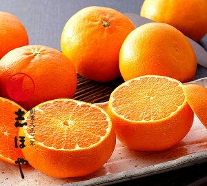 食べ比べ!愛媛県産 せとか・甘平(かんぺい)詰合せ約1.5kg(6玉入)