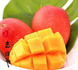 完熟マンゴー (太陽のタマゴ) 2Lサイズ お祝 内祝 お返し お取り寄せ ギフト