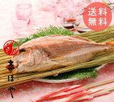 【送料無料】名物 塩むし桜鯛 お祝 内祝 お返し お食い初め 初節句 お取り寄せ ギフト 尾頭付き 天然真鯛