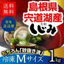 \楽天ランキング1位/宍道湖 冷凍しじみ Mサイズ1kg♪青森県・十三湖に並ぶ日本有数の漁獲量…