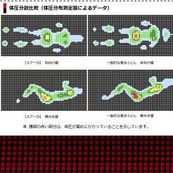 【東京西川】エアーエスアイマットレスタイプ敷き布団レギュラーシングル9×97×195cm100ニュートン体圧分散気持ち良い耐久性長持ちボリューム満点ウレタン高反発日本製AIRSI100NAI1010