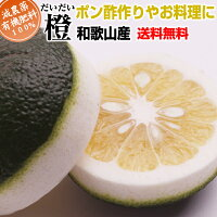 定番橙(だいだい)10kg