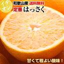【特別栽培・有機肥料100%】定番はっさく(八朔)5kg  ...